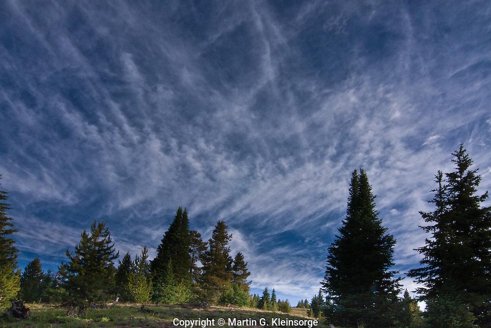 Cirrus fibratus clouds  over Shrine Pass, Colorado.