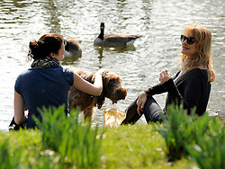 © Licensed to London News Pictures. 11/03/2012. Oxford, UK. Two women and a dog feed the ducks. People enjoy the early morning sunshine on the River Cherwell in Oxford today 11 March 2012. Photo credit : Stephen SImpson/LNP