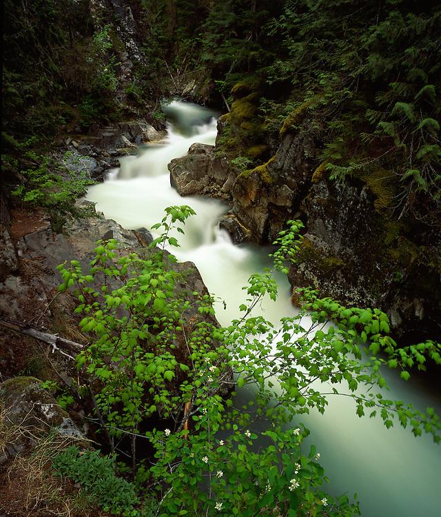 Granite Creek Falls near Sandpoint in North Idahos Panhandle cascades through lush forest.