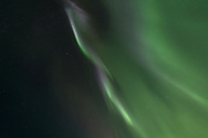 The Northern Lights shine above our heads in Glacier Bay National Park