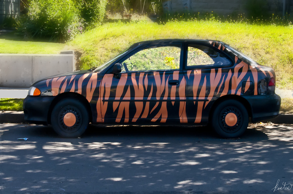 Small auto with painted on tiger stripes.