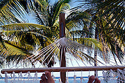 Feet in hammock, Cayman Brac, Cayman Islands, British West Indies,