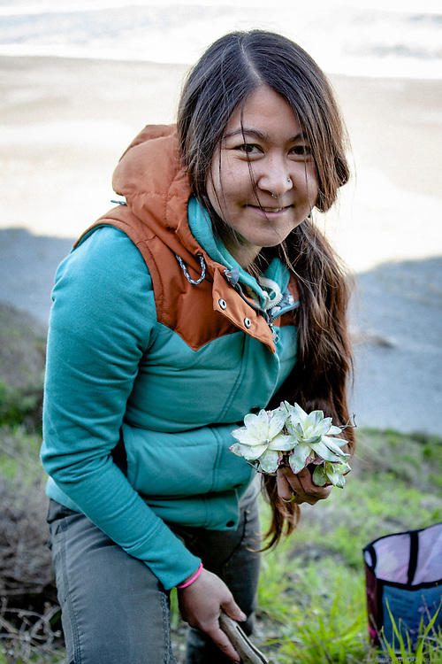 Bianca Hayashi of CDFW poses with a handful of the recovered Dudleya succulents.