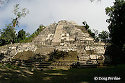 Mayan pre-classic pyramid temple, structure N10-43 from 100 B.C., 33m ( 100 ft ) tall - the tallest pre-Classic structure in the Maya region, Lamanai Ruins, Orange Walk District, Belize, Central America
