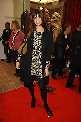 LISA BILTON at a party to celebrate the opening of the new Uniqlo store at 331 Oxford Street, London W1 on 6th November 2007.<br />