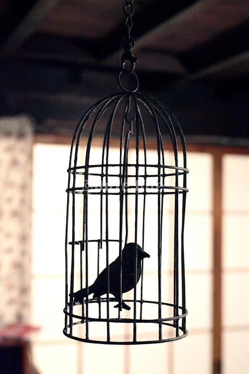 metal fake bird in cage