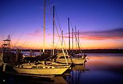 Docked sailboats at twilight, South Carolina
