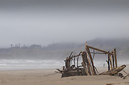 """On a very, very foggy day in Cannon Beach, some unknow persons have created a wonderful sculpture using driftwood as their medium. Into the mix a lone figure appears through the opening of this """"magic doorway."""""""