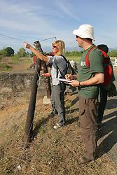 Volunteers Checking Voltage
