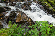 Stream scene at Eskdale Mill Historic Site, 1500s corn mill. England Coast to Coast hike day 2 of 14: from Eskdale in Cumbria county, we walked to Boot for lunch at a local pub and a visit to a working medieval corn mill, in the United Kingdom, Europe. We then climbed to Burnmoor Tarn, then descended to the hamlet of Wasdale Head. Via minibus we returned to Irton Hall for the second night. [This image, commissioned by Wilderness Travel, is not available to any other agency providing group travel in the UK, but may otherwise be licensable from Tom Dempsey – please inquire at PhotoSeek.com.]