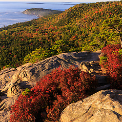 """Blueberry bushes turn red in fall on the ledges on """"The Beehive"""" in Maine's Acadia National Park."""