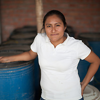 Karina Joanna Huamán García, engineer in charge of production at BOS. She works directly with producers on technical assistance, on organic plant disease control and organic fertilizers. She has set up a biological fertilizer factory, with particular emphasis on creating organic  growth stimulator liquids for bananas that are distributed to members of the coop.