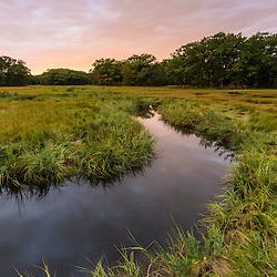 The salt marsh along the Castle Neck River in Ipswich, Massachusetts.