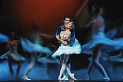 Principle dancers Seth Orza, as Prince Siegfried, and Noelani Pantastico, as Odette/Odile, perform with the Pacific Northwest Ballet company during a final dress rehearsal of Swan Lake, Thursday, Feb. 1, 2018, on the eve of opening night.