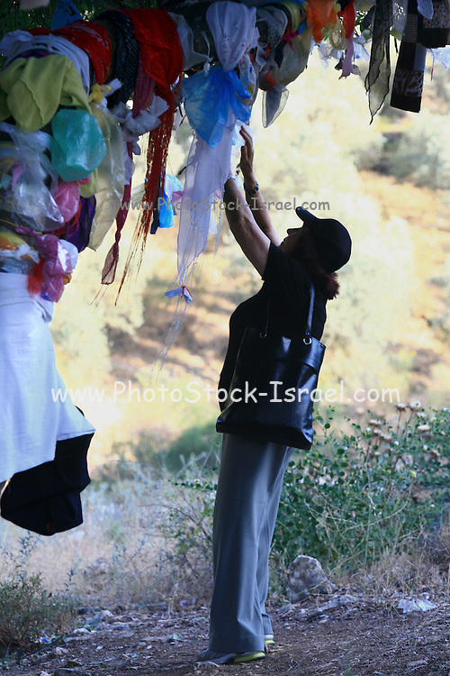 Israel, Upper Galilee, Amuka, The grave of Yonatan ben Uziel, Pilgrimage site for believers seeking a spouse or marriage. Young women tie scarfs and plastic bags on a tree, a popular ritual at the burial site