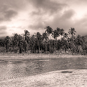 A tropical oasis of palms and bay, sepia toned in black and white, of Tayrona National Park in Colombia.