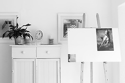 A blank canvas stands on an easel in the lounge  of a suburban home in  Fish Hoek, Cape Town, Western Cape, South Africa.(Picture: JULIAN GOLDSWAIN)