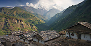 View of the Annapurna massif over the slate roofs of the traditional Gurung village of Landruk in the Annapurna Himalaya, Nepal.