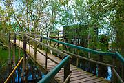 Aiguamolls de l'Empordà Natural Park
