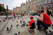 Gdańsk, 2008-06-22.  Karmienie gołębi na ulicy Długi Targ, Gdańsk