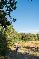 Truffle hunt on the Les Pastras farm in Cadenet in the Luberon region of Provence, France.