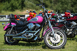 The only factory painted bike of this pink color Harley-Davidson has produced owned by Brad Gregory at the Sturgis FXR Bike Show at City Park. Sturgis, SD, USA.  August 2, 2015.  Photography ©2015 Michael Lichter.