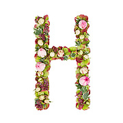 Capital Letter H Part of a set of letters, Numbers and symbols of the Alphabet made with flowers, branches and leaves on white background