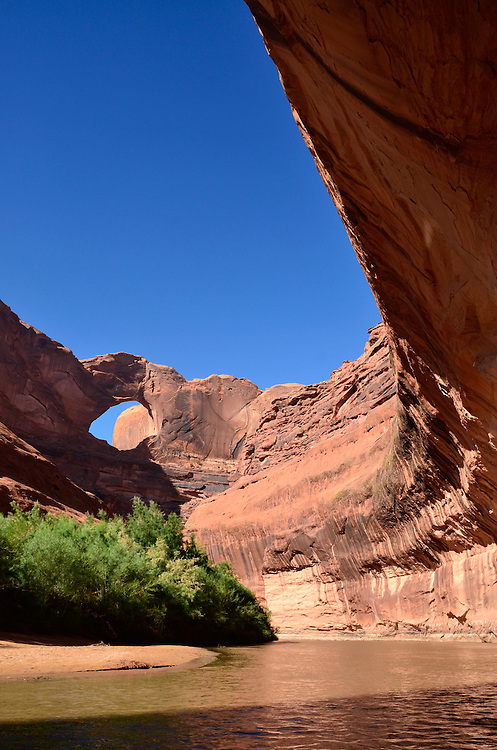 Stevens Arch high on wall above Escalante River, Utah.