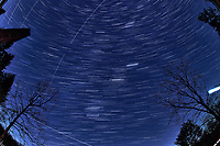 Winter Nighttime Sky Over New Jersey. Composite star trail image (20:00 - 20:29) taken with a Nikon D850 camera and 8-15 mm fisheye lens (ISO 800, 15 mm, f/8, 30 sec). Raw images processed with Capture One Pro and the composite created with Photoshop CC (statistics, maximum).