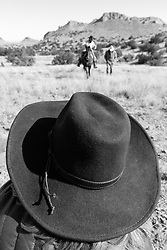 Photographers taking pictures of cowboy on horseback during bison roundup, Ladder Ranch, west of Truth or Consequences, New Mexico, USA.