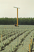 Propeller tower for frost protection. Medoc, Bordeaux, France