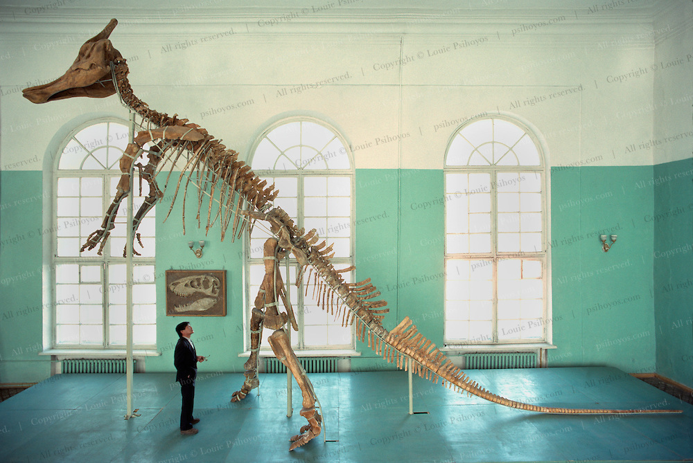 Perle, Mongolian Paleontologist with a Giant Duckbill Dinosaur at the Ulan Bator State Museum in Mongolia.  The plant eater was found in the Gobi Desert.