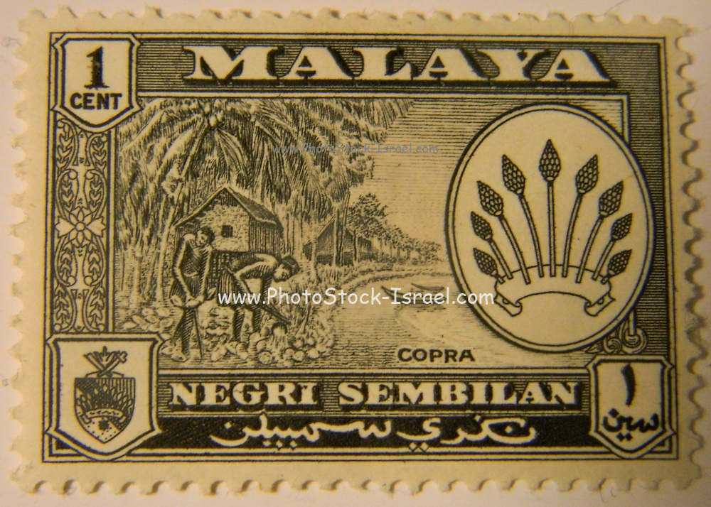 State of Negri Sembilan on Malayan Postage Stamp 1957