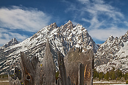 """A ragged jagged burned out tree stump mirrors the ragged jagged peaks of the of the Cathedral Group of the Grand Tetons in Grand Teton National Park.<br /> <br /> For production prints or stock photos click the Purchase Print/License Photo Button in upper Right; for Fine Art """"Custom Prints"""" contact Daryl - 208-709-3250 or dh@greater-yellowstone.com"""
