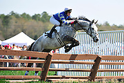 27 March 2010 : RELEAR and Paddy Young clear one of the early timber fences in the third race.