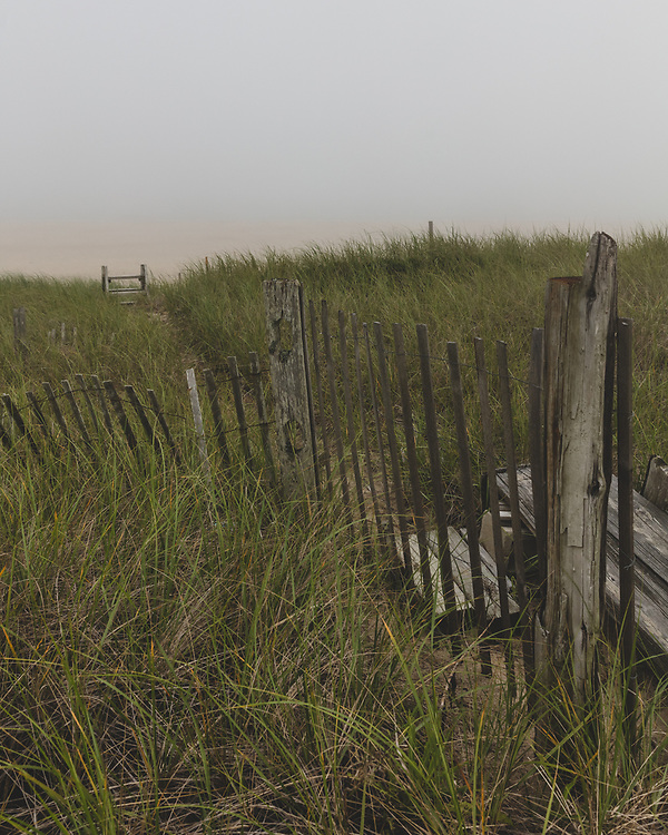 A weathered beach fence shaping the path towards the beach at Surfside.