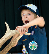 Skylar Lewis, 8 looks surprised that the sheds he's holding sold for $18 a pound on Saturday at the 42nd annual Boy Scouts of America Antler Auction.