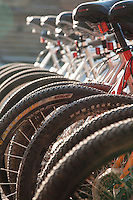Bikes at Redfish Lake, Idaho.