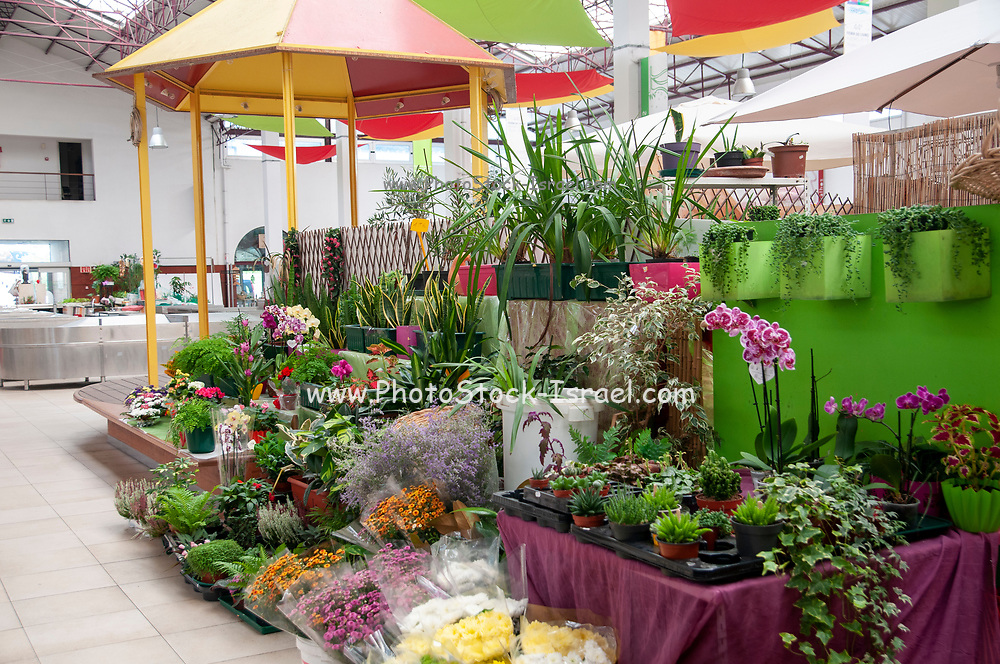 The municipal market in Aveiro, Portugal selling fresh flowers and plants