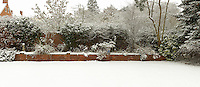 Back garden with snow