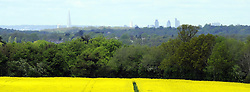 © Licensed to London News Pictures. 11/05/2012.Sunny rapeseed field in Chelsfield, Kent. A clear view today 11.05.2012 of the Shard and London skyline from Chelsfield Village in Kent which is over 15 miles away..Photo credit : Grant Falvey/LNP