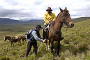 Yanahurco - Thursday, Dec 27 2007: Pablo, Hacienda Yanahurco's business manager, adjusts Lorna Brooks' stirrups during a ride at Yanahurco. Hacienda Yanahurco is situated in the Cordillera Real de Los Andes on the South-eastern flank of Cotopaxi Volcano.  (Photo by Peter Horrell / http://www.peterhorrell.com)