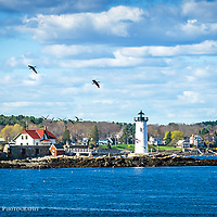 Portsmouth Harbor Lighthouse, New Castle NH. <br /> Post card is 4.25 x 6.<br /> Designed and printed in NH on FSC Recycled Paper.