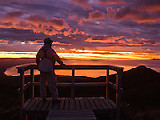 See the sun rise through orange, pink, and magenta clouds over the South Pacific Ocean, from a boardwalk atop the Tuatapere Hump Ridge Track, in Fiordland National Park, South Island, New Zealand. In 1990, UNESCO honored Te Wahipounamu - South West New Zealand as a World Heritage Area.