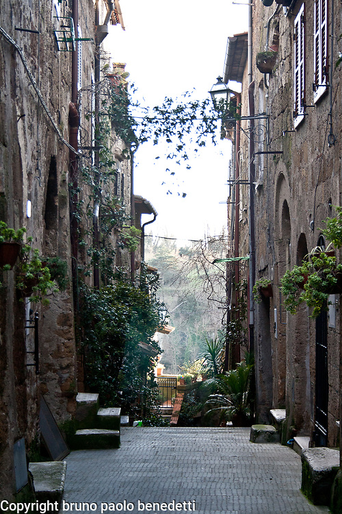italian alley in Tuscany.Inside Pitigliano with plants and flowers decorating the houses windows