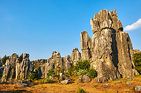 Chine, Yunnan, Foret de pierre de Shilin a Lunan // Limestone pinnacles in Shilin, Stone Forest, at Lunan, Yunnan, China