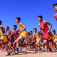 The boys varsity leaps from the starting line at the Zuni Invitational cross country meet in Zuni Saturday.