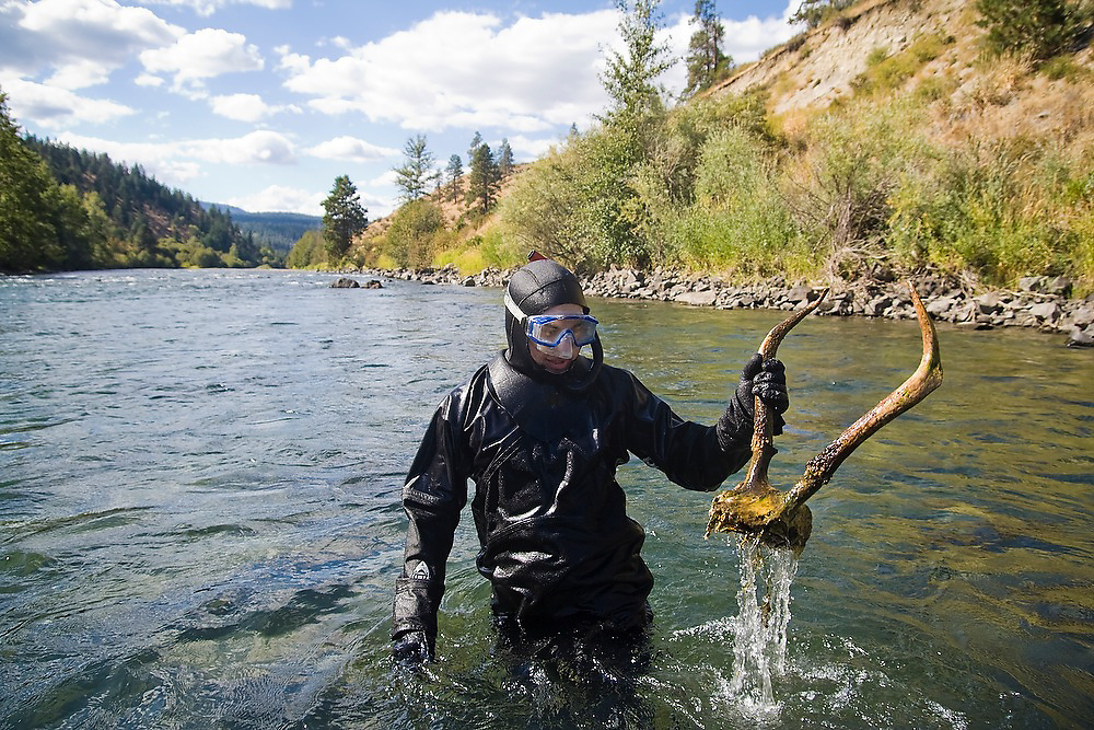 Jeremy Cram holds up antlers found in the river during a snorkel surveys of fish and habitat distribution on the Yakima River in Eastern Washington.