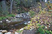 Santiago Creek in Orange County California