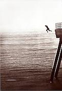 A Man Jumping Off The Huntington Beach Pier
